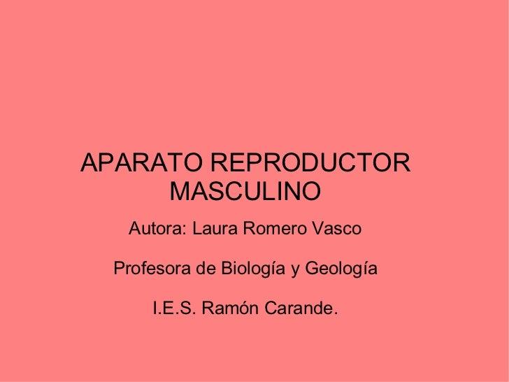 APARATO REPRODUCTOR MASCULINO Autora: Laura Romero Vasco Profesora de Biología y Geología I.E.S. Ramón Carande.