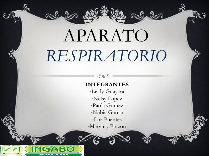 APARATO RESPIRATORIO <ul><li>INTEGRANTES </li></ul><ul><li>Leidy Guayara </li></ul><ul><li>Nelsy Lopez </li></ul><ul><li>P...