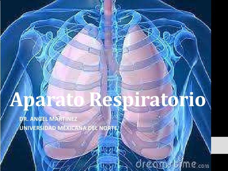 Aparato Respiratorio<br />DR. ANGEL MARTINEZ<br />UNIVERSIDAD MEXICANA DEL NORTE<br />
