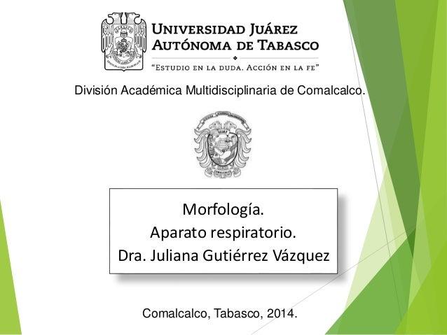 División Académica Multidisciplinaria de Comalcalco.  Morfología.  Aparato respiratorio.  Dra. Juliana Gutiérrez Vázquez  ...