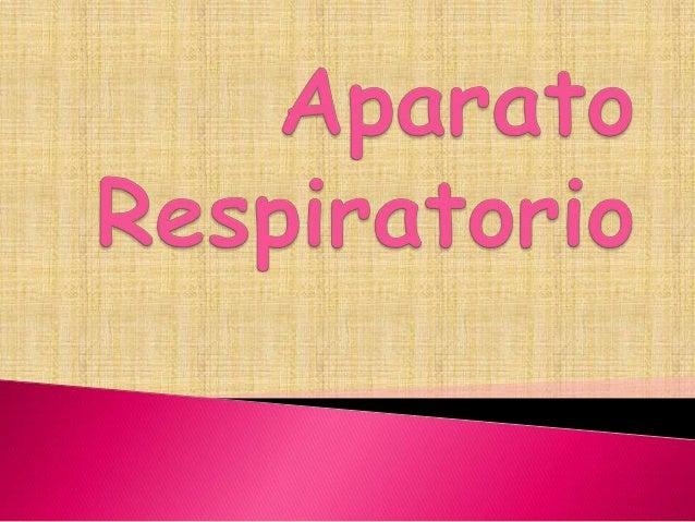 1.   Función.2.   Anatomía del aparato     respiratorio.3.   Patologías.