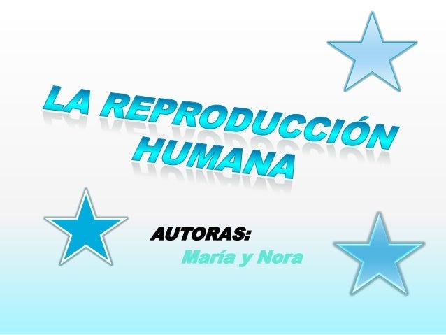 AUTORAS: María y Nora