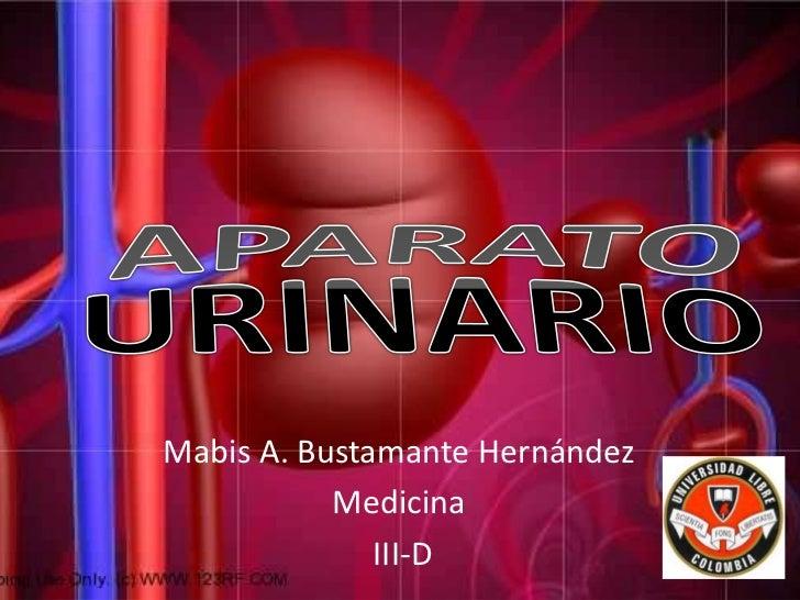 APARATO URINARIO<br />Mabis A. Bustamante Hernández<br />Medicina<br /> III-D<br />