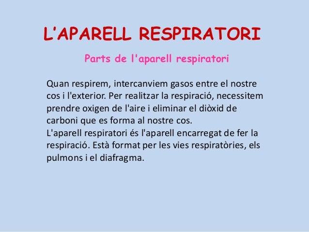 Parts de l'aparell respiratori Quan respirem, intercanviem gasos entre el nostre cos i l'exterior. Per realitzar la respir...