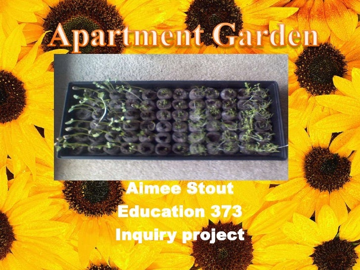 Apartment Garden<br />Aimee Stout<br />Education 373 <br />Inquiry project<br />
