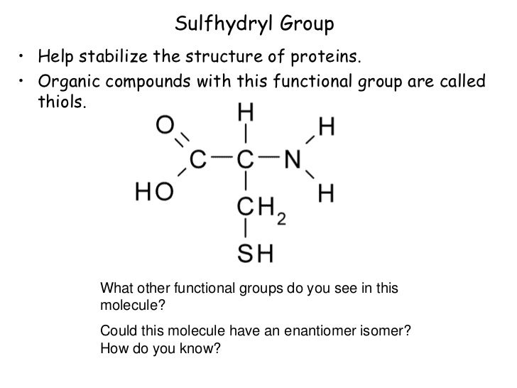 properties of functional groups essay Welcome to the introduction to spectroscopy  benzene ring and the main functional groups eg  since higher temperatures improve the adsorbing properties of the.