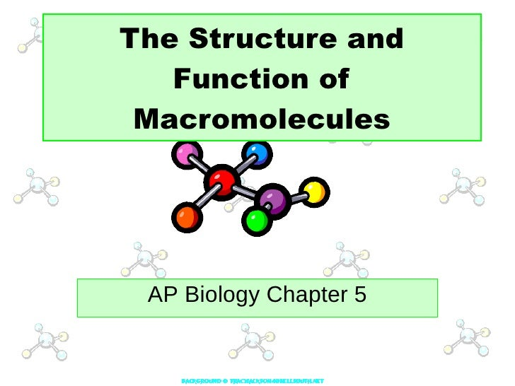 The Structure and Function of Macromolecules AP Biology Chapter 5