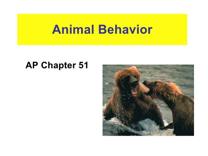 Animal Behavior AP Chapter 51