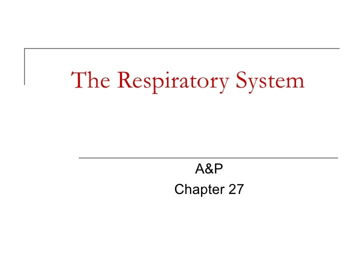 The Respiratory System A&P Chapter 27