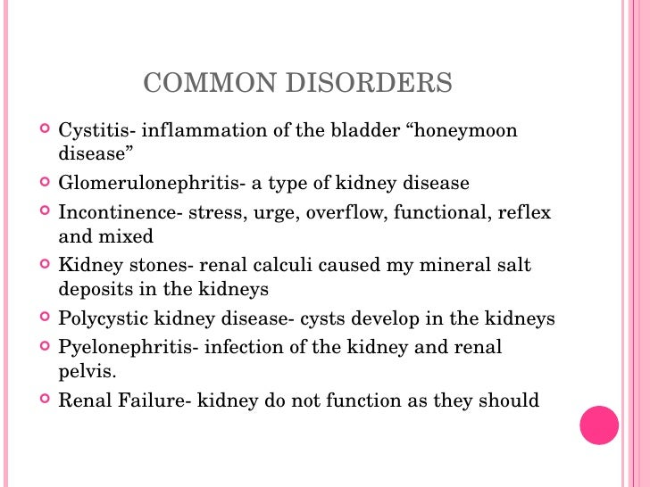 conclusion of urinary system