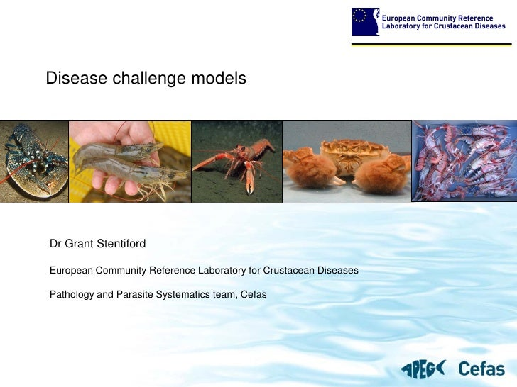 Disease challenge models     Dr Grant Stentiford  European Community Reference Laboratory for Crustacean Diseases  Patholo...