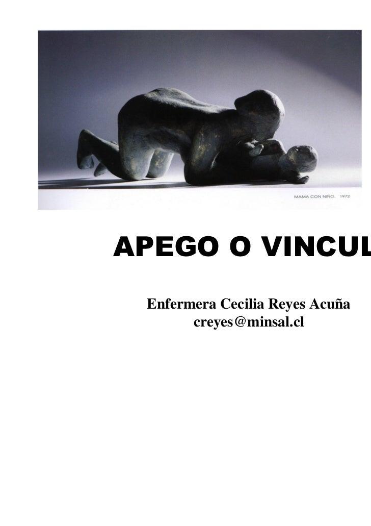 Enfermera Cecilia Reyes Acuña      creyes@minsal.cl