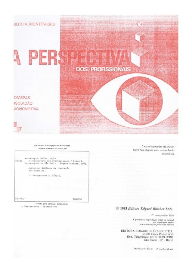 A perspectiva dos profissionais gildo a. montenegro
