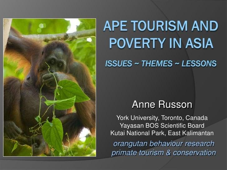 Anne Russon  York University, Toronto, Canada   Yayasan BOS Scientific BoardKutai National Park, East Kalimantanorangutan ...