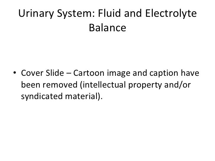 Urinary System: Fluid and Electrolyte Balance <ul><li>Cover Slide – Cartoon image and caption have been removed (intellect...