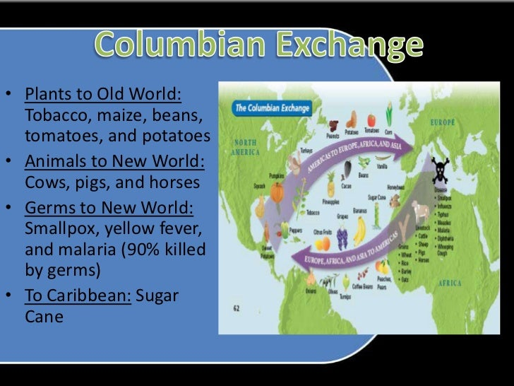 the great columbian exchange history essay Get access to columbian exchange essays only from anti essays listed results 1 - 30 get studying today and get the grades you want only at.