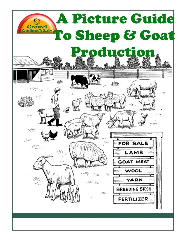Contents A Picture Guide To Sheep & Goat Production