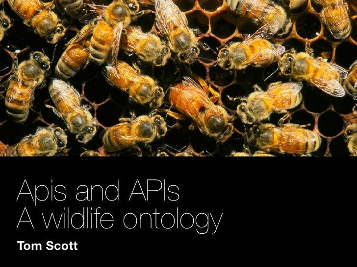 Apis and APIs A wildlife ontology Tom Scott