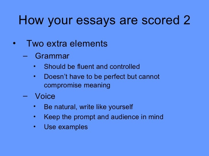 education synthesis essay