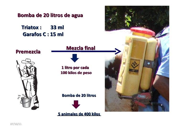 07/10/11 Bomba de 20 litros de agua  Triatox :  33 ml  Garafos C : 15 ml  Premezcla  Mezcla final  1 litro por cada 100 ki...