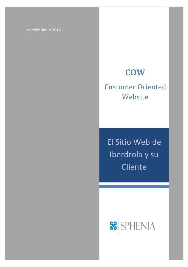 Aplicación COW. Customer Oriented Website.