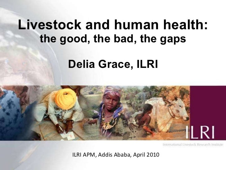 Livestock and human health: The good, the bad, the gaps