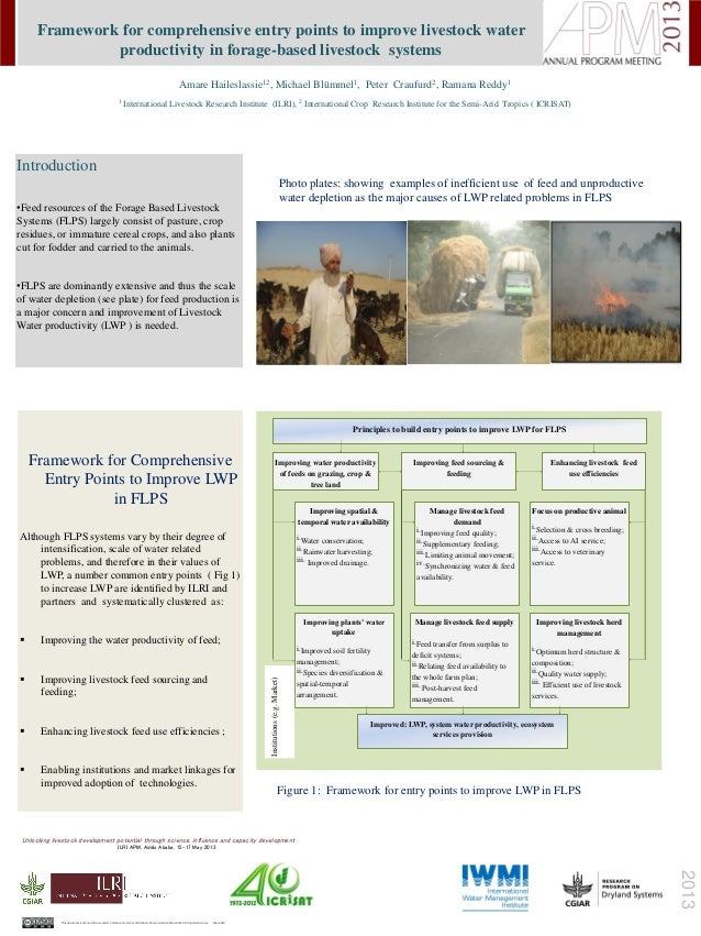 Framework for comprehensive entry points to improve livestock water productivity in forage-based livestock systems