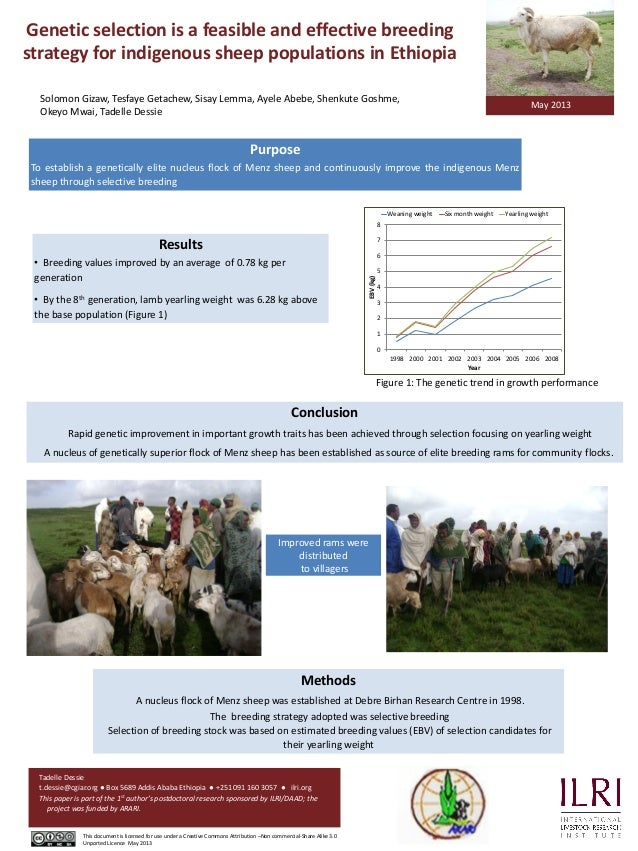 Genetic selection is a feasible and effective breeding strategy for indigenous sheep populations in Ethiopia Methods A nuc...