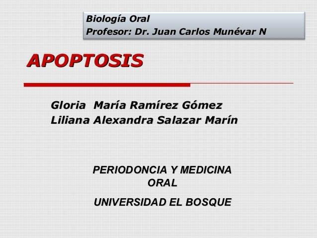 Biología Oral      Profesor: Dr. Juan Carlos Munévar NAPOPTOSIS Gloria María Ramírez Gómez Liliana Alexandra Salazar Marín...