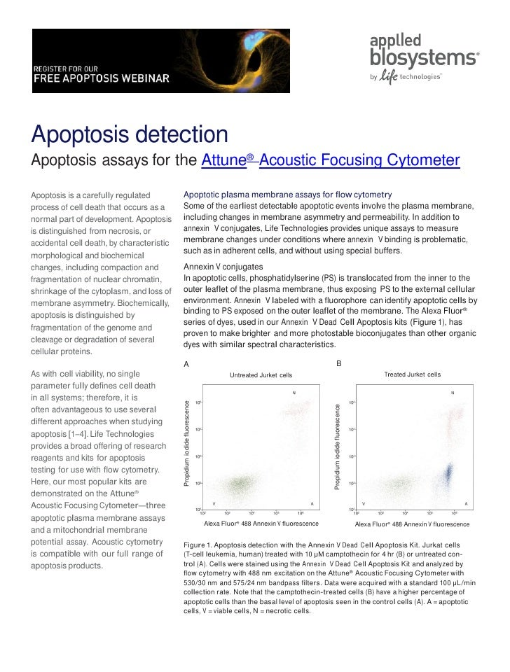 Apoptosis Assays for Attune® Acoustic Focusing Cytometer