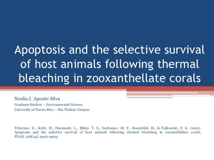 Apoptosis and the selective survival of host animals following thermal bleaching in zooxanthellate coralsNoelia I. Aponte ...