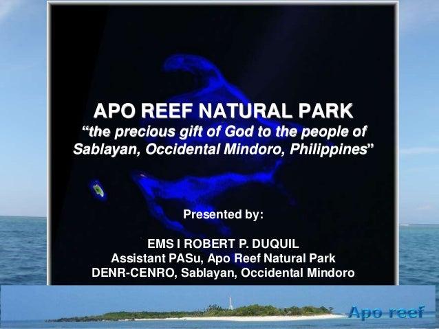 Presentation on Apo Reef updates 2013
