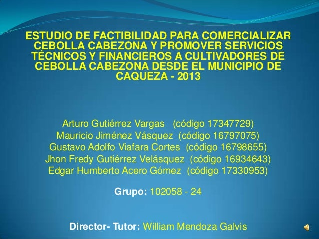 ESTUDIO DE FACTIBILIDAD PARA COMERCIALIZARCEBOLLA CABEZONA Y PROMOVER SERVICIOSTÉCNICOS Y FINANCIEROS A CULTIVADORES DECEB...