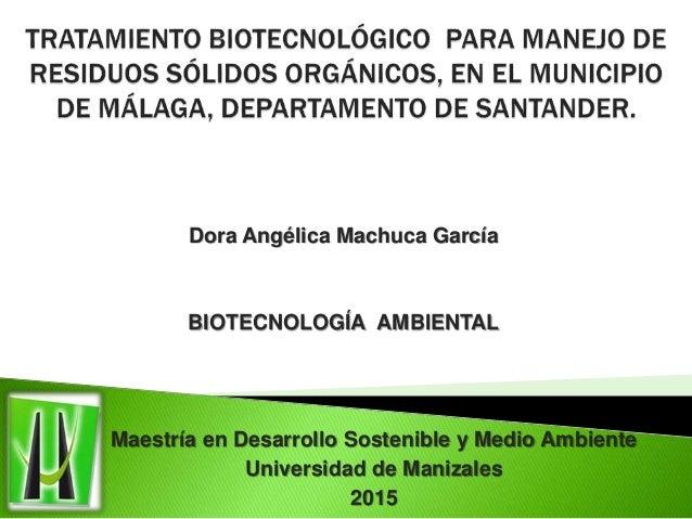 Dora Angélica Machuca García BIOTECNOLOGÍA AMBIENTAL Maestría en Desarrollo Sostenible y Medio Ambiente Universidad de Man...