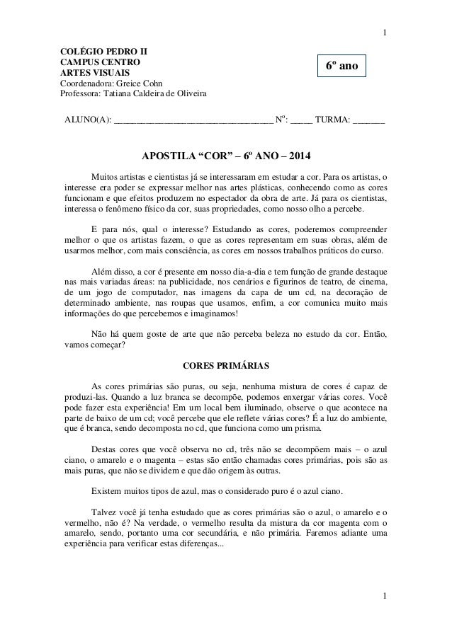 1 COLÉGIO PEDRO II CAMPUS CENTRO ARTES VISUAIS Coordenadora: Greice Cohn Professora: Tatiana Caldeira de Oliveira  6º ano ...