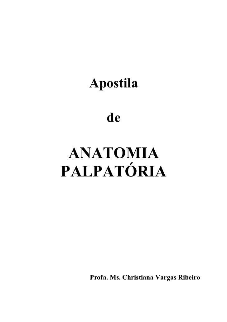 Apostila de Anatomia Palpatória (produção independente)