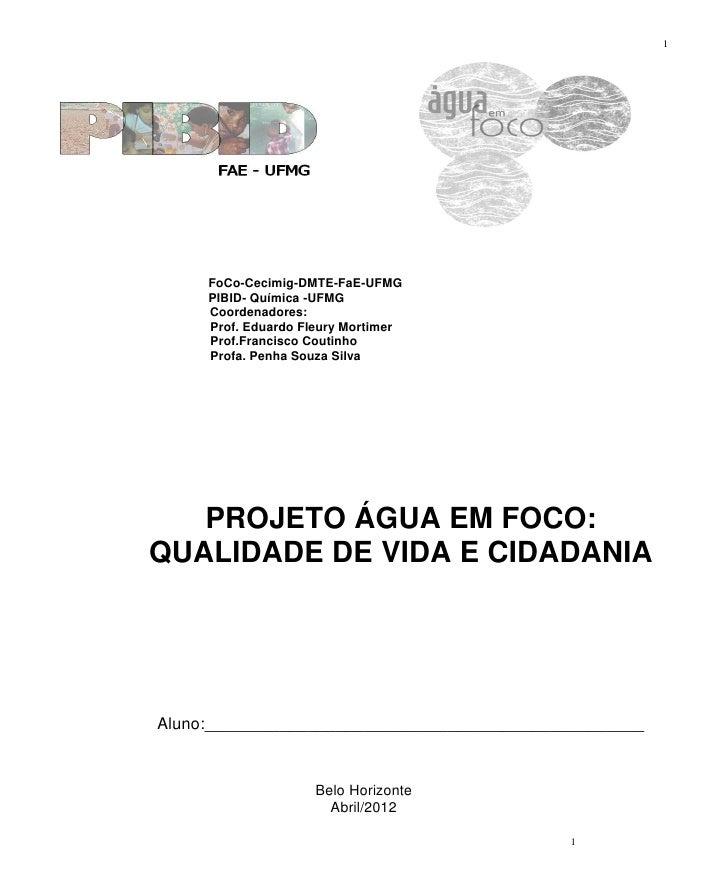 1     FoCo-Cecimig-DMTE-FaE-UFMG     PIBID- Química -UFMG     Coordenadores:     Prof. Eduardo Fleury Mortimer     Prof.Fr...