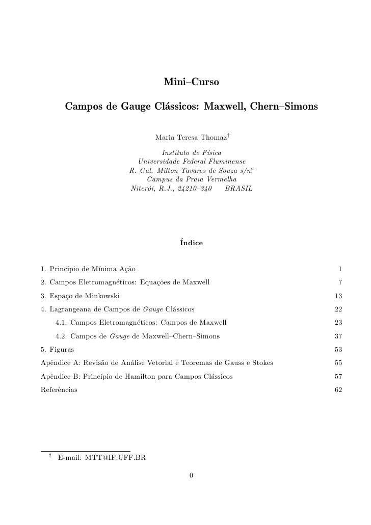 Mini-Curso: Campos de gauge clássicos: Maxwell e Chern-Simons