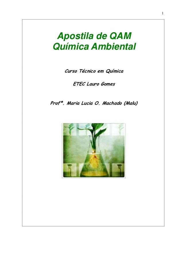 1 Apostila de QAM Química Ambiental Curso Técnico em Química ETEC Lauro Gomes Profª. Maria Lucia O. Machado (Malu)