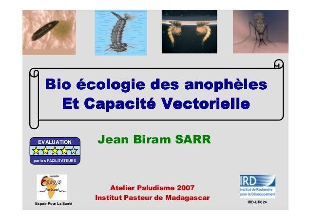 BioBioBioBio éééécologie des anophcologie des anophcologie des anophcologie des anophèèèèleslesleslesEt CapacitEt CapacitE...