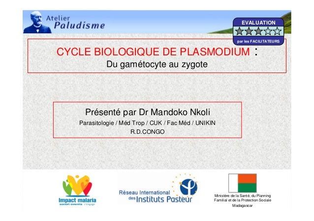 06/05/2008 IPM 1CYCLE BIOLOGIQUE DE PLASMODIUM :Du gamétocyte au zygotePrésenté par Dr Mandoko NkoliParasitologie / Méd Tr...