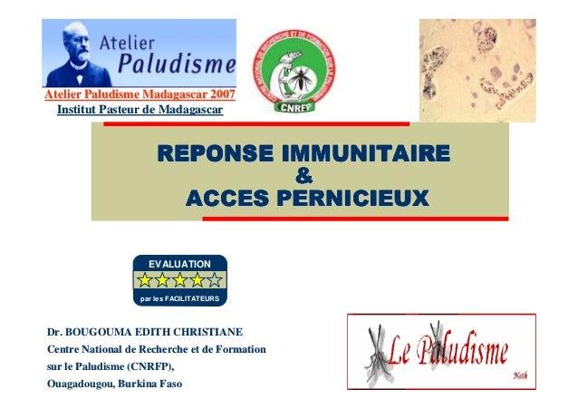 Réponse immunitaire et accès pernicieux