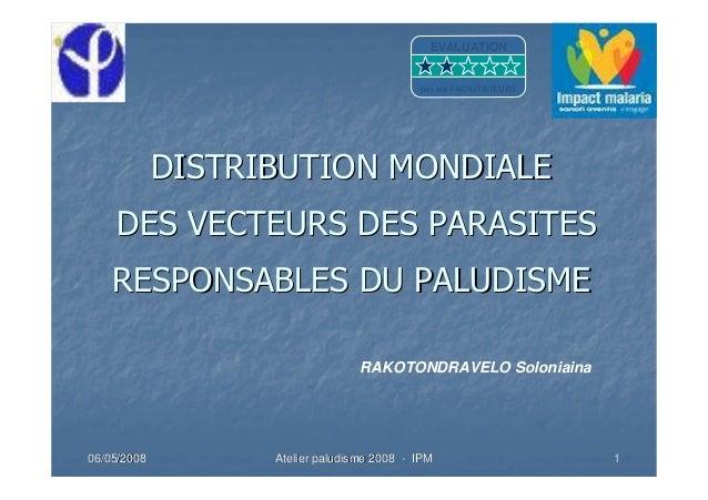 06/05/200806/05/2008 Atelier paludisme 2008Atelier paludisme 2008 -- IPMIPM 11DISTRIBUTION MONDIALEDISTRIBUTION MONDIALEDE...