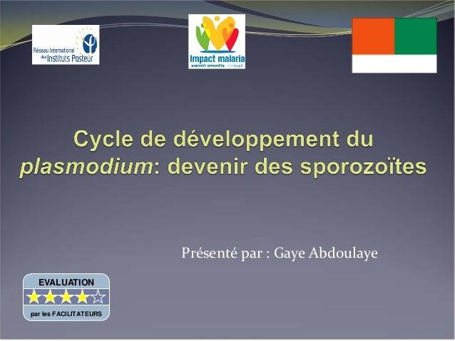 Cycle de developpement du Plasmodium: devenir des sporozoïtes