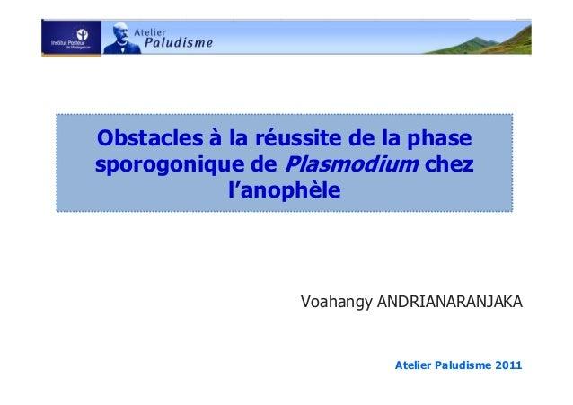 Obstacles à la réussite de la phasesporogonique de Plasmodium chezl'anophèleVoahangy ANDRIANARANJAKAAtelier Paludisme 2011