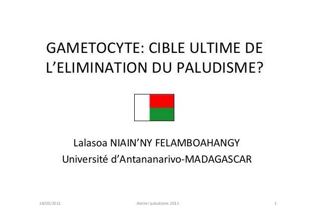 GAMETOCYTE: CIBLE ULTIME DEL'ELIMINATION DU PALUDISME?Lalasoa NIAIN'NY FELAMBOAHANGYUniversité d'Antananarivo-MADAGASCAR1A...
