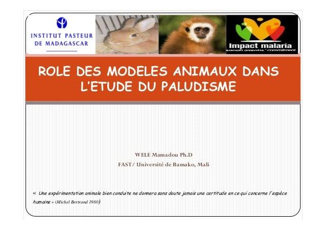 WELE Mamadou Ph.DFAST/ Université de Bamako, MaliROLE DES MODELES ANIMAUX DANSL'ETUDE DU PALUDISME« Une expérimentation an...