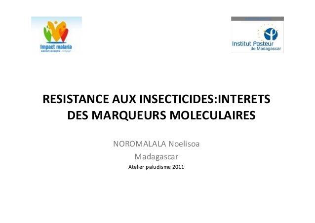 RESISTANCE AUX INSECTICIDES:INTERETS    DES MARQUEURS MOLECULAIRES           NOROMALALA Noelisoa               Madagascar ...