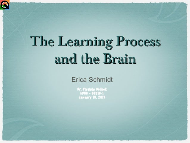 The Learning Process   and the Brain      Erica Schmidt       Dr. Virginia Bullock         EDUC - 6651C-1        January 1...