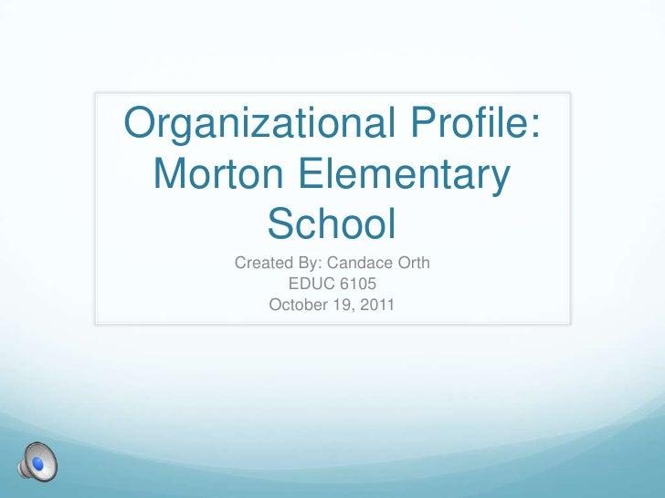 Organizational Profile: Morton Elementary School